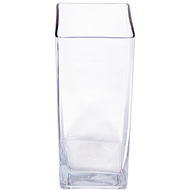 Viz Floral 4x4x12 rectangular glass vase