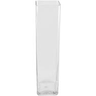 Viz Floral 5x5x24 rectangular glass vase