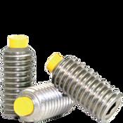 "#10-24x1"" Socket Set Screws Cup Point Coarse 18-8 Stainless w/ Nylon-Tip (1,000/Bulk Pkg.)"