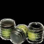 "#10-32x1/4"" Socket Set Screws Oval Point Fine Alloy w/ Nylon-Patch Thermal Black Oxide (1,000/Bulk Pkg.)"