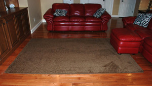 """Premium Carpet Stair Treads 27"""" x 9"""" Timberline 70 Oz PLUS a Matching 6' Runner and 6'x9' Area Rug"""