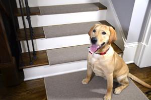"Dean Modern DIY Peel and Stick Bullnose Wraparound Non-Skid Carpet Stair Treads - New Suede Beige 30""W (15) Plus a Matching 2' x 3' Landing Mat"