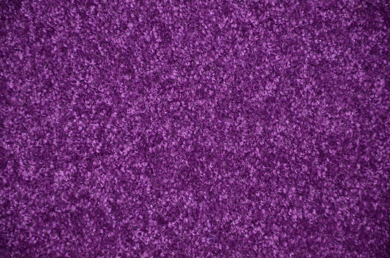 Grape Purple 6 X 8 Plush Bound Carpet Area Rug