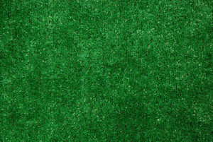 Dean Indoor/Outdoor Green Artificial Grass Turf Area Rug 6' x 8'