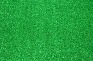 Dean Indoor/Outdoor Green Artificial Grass Turf Area Rug 6' x 9'