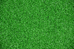 Dean Premium Heavy Duty Indoor/Outdoor Green Artificial Grass Turf Carpet Rug/Putting Green/Dog Mat, Size: 6' x 8'