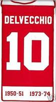Alex Delvecchio Mini Retirement Banner Detroit Red Wing