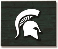 Michigan State University Team Sports America Lit Wall Décor