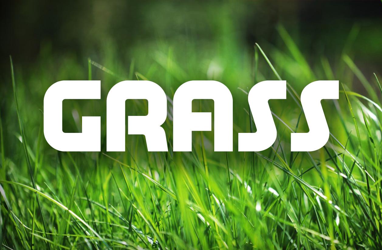 grass-copy.jpg