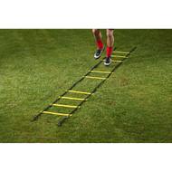 Mitre Adgility Ladder