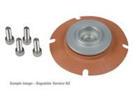 Aeromotive EFI Regulator Service Kit 13002