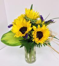 1/2 Dozen Sunflowers Arranged