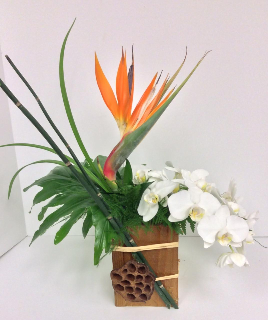 Bird And Orchid Lotus Box Arrangement Centerville Florists