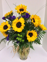Dozen Sunflowers arranged