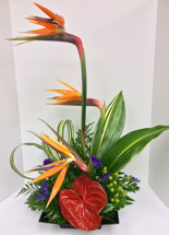 Island breeze tropical arrangement