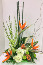 Tropical Birds and Green Orchid Arrangement