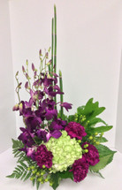 Dreamy Dendrobium Berry Arrangement