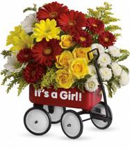 Baby Girl Wagon