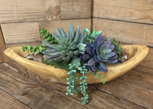 Oblong Wooden Bowl with Permanent Succulents
