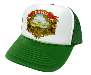 As shown in photo then color of the hat Green/white front