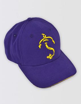 Aladdin Baseball Cap