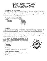 Energy Flow in Food Webs PDF