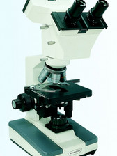 Dual View Microscope MRP-3000D
