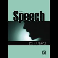 Sinful Speech by John Flavel (Paperback)