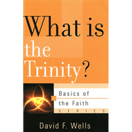 What Is the Trinity? by David F. Wells (Paperback)