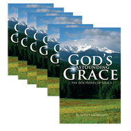 God's Astounding Grace by D. Scott Meadows | Bundle of 20 (Booklet)