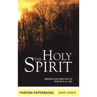 The Holy Spiritby John Owen (Paperback)