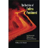 The Doctrine of Endless Punishment by William G.T. Shedd (Paperback)