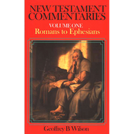 New Testament Commentaries Vol 1 - Romans to Ephesians by Geoffrey Wilson (Paperback)