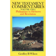 New Testament Commentaries Vol 2 - Philippians to Hebrews and Revelation by Geoffrey Wilson (Paperback)