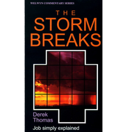 The Storm Breaks by Derek Thomas (Paperback)
