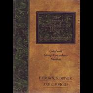 Brown-Driver-Briggs Hebrew & English Lexicon by F. Brown, S. Driver, & C. Briggs (Hardcover)