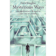 Mysterious Ways by David Kingdon (Paperback)