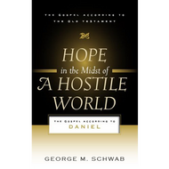 Hope in the Midst of a Hostile World by George M. Schwab (Paperback)