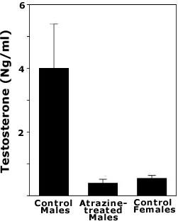 Atrazine at 25 parts per billion decreases testosterone 10 times in male frogs.