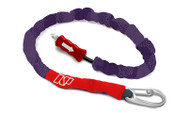 NP TEAM RIDER HANDLE PASS LEASH  1