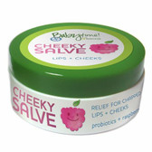 Babytime by Episencial Cheeky Salve Organic Lip and Cheek and Nipple Care, 0.5 Ounce