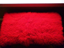 Real Genuine Mongolian Tibet Dyed Red Lamb Fur Rug  PlateThrow New Wool