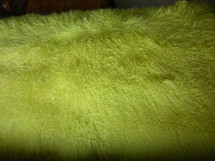 Real Genuine Mongolian Tibet Dyed Lemon Lime Lamb Fur Rug  PlateThrow New Wool