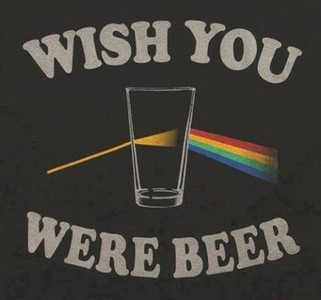 Wish you were beer pink floyd T-Shirt