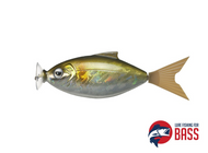 Fish Arrow Motor Shad - MECHANISED TAIL