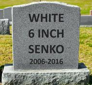 """RIP Gary Yamamoto Senko 6"""""""