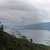 Indonesia Java Blue Batavia