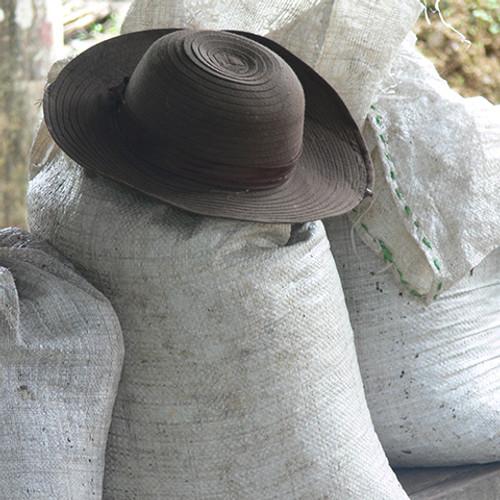 Ecuador Saraguallas