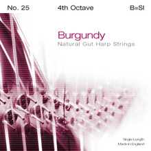 Burgundy 4th Octave B