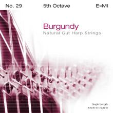 Burgundy 5th Octave E